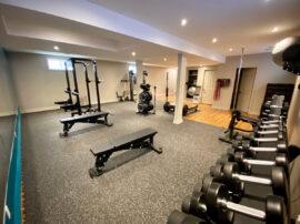 PTK Training Studio weights
